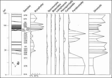 Diagram Fossil Layer Occurence