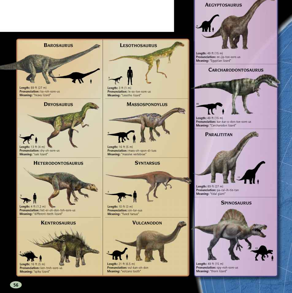 Dinosaurs Found Lesotho