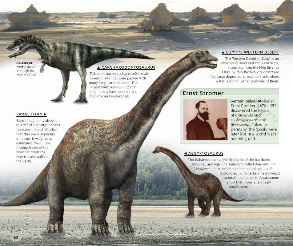 Dinosaur Big Clear Images