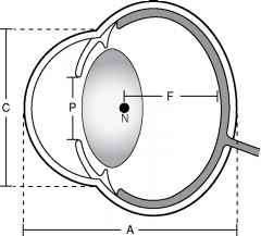 Nodal Distance Eye